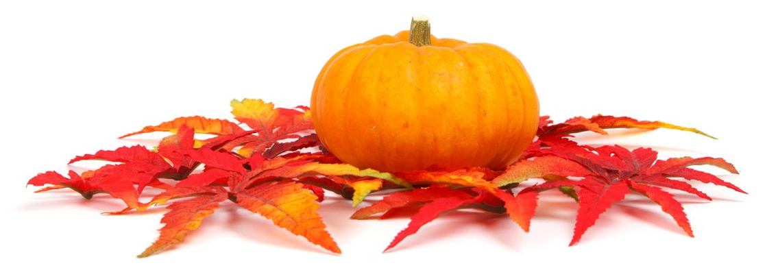 pumpkin-and-leaves-11286904406ZELq