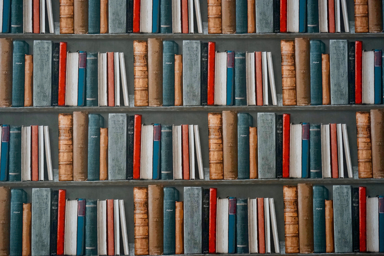 book-bookcase-books-1166657